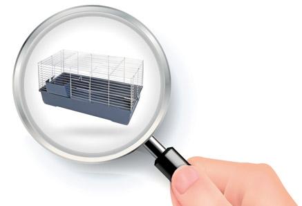 comment choisir cage