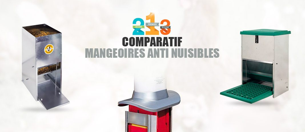 meilleure mangeoire anti nuisible