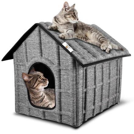 niche chat puppy kitty